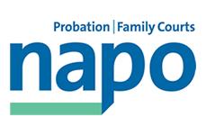 napo_logo2